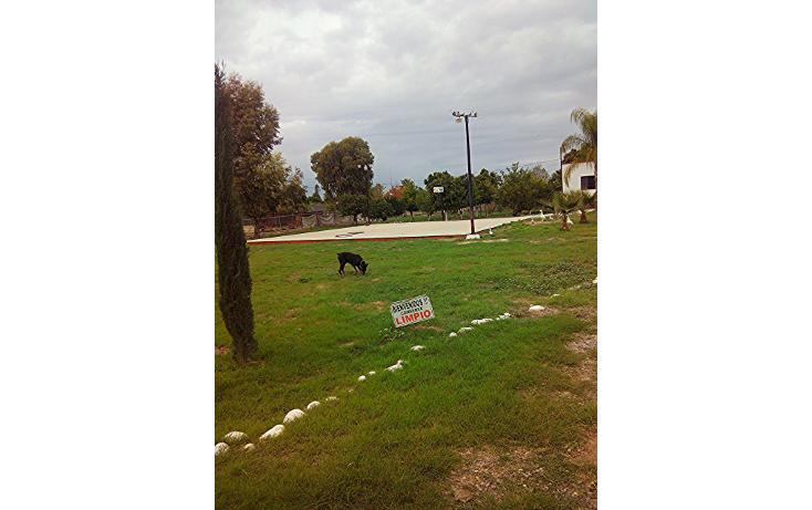 Foto de rancho en venta en  , fraccionamiento r?o bonito, hermosillo, sonora, 1950737 No. 17
