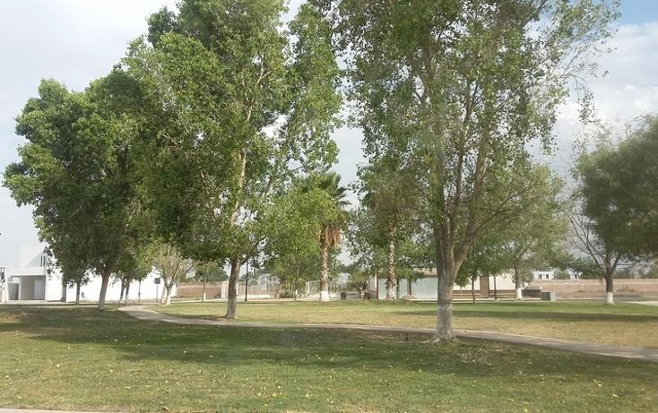 Foto de terreno habitacional en venta en villa vignola , fraccionamiento villas del renacimiento, torreón, coahuila de zaragoza, 1965383 No. 05