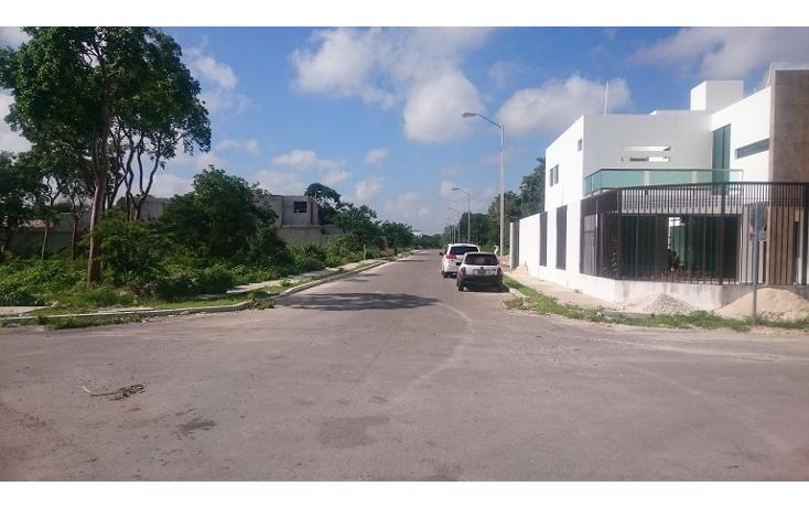 Foto de terreno habitacional en venta en  , francisco de montejo ii, m?rida, yucat?n, 1315799 No. 07