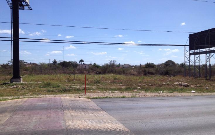 Foto de casa en renta en  , francisco de montejo, m?rida, yucat?n, 1253737 No. 03