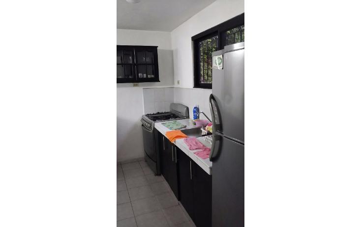 Foto de casa en renta en  , francisco de montejo, m?rida, yucat?n, 1389303 No. 05