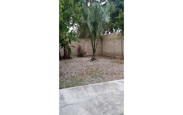 Foto de casa en renta en  , francisco de montejo, m?rida, yucat?n, 1389303 No. 10