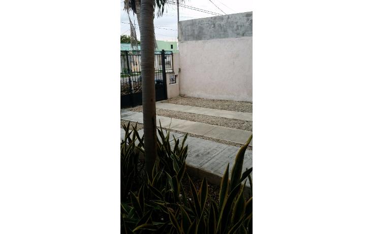 Foto de casa en renta en  , francisco de montejo, m?rida, yucat?n, 1389303 No. 13
