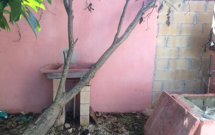 Foto de casa en venta en  , francisco de montejo, mérida, yucatán, 1475647 No. 11