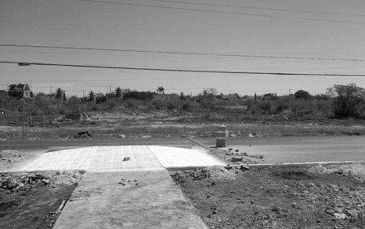 Foto de terreno comercial en renta en  , francisco de montejo, mérida, yucatán, 1577738 No. 01