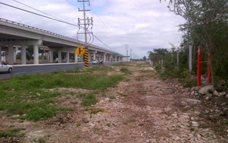 Foto de terreno comercial en renta en  , francisco de montejo, mérida, yucatán, 1577738 No. 02