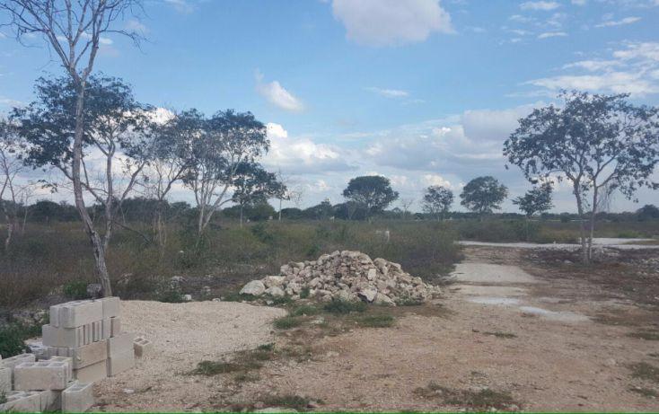 Foto de terreno habitacional en venta en, francisco de montejo, mérida, yucatán, 1646204 no 05