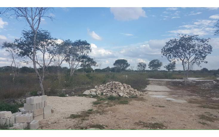 Foto de terreno habitacional en venta en  , francisco de montejo, m?rida, yucat?n, 1646204 No. 05
