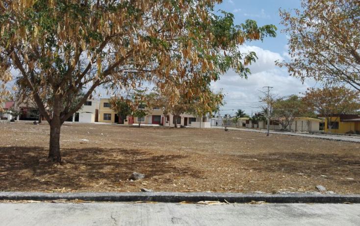 Foto de casa en renta en  , francisco de montejo, m?rida, yucat?n, 1813518 No. 18