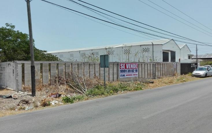 Foto de terreno comercial en venta en  , francisco el porvenir, mérida, yucatán, 1050475 No. 02