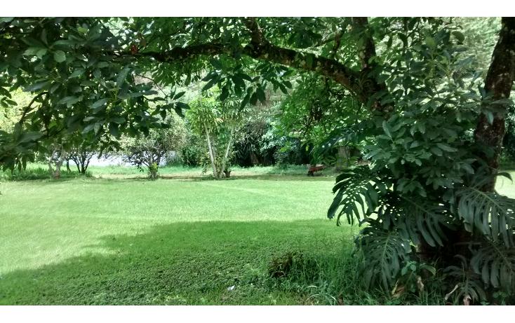 Foto de terreno habitacional en venta en  , francisco ferrer guardia, xalapa, veracruz de ignacio de la llave, 1129599 No. 01