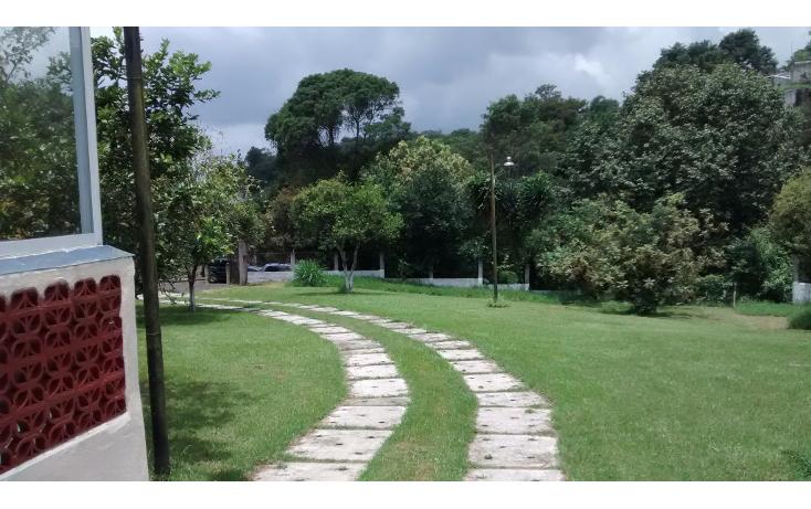 Foto de terreno habitacional en venta en  , francisco ferrer guardia, xalapa, veracruz de ignacio de la llave, 1129599 No. 05