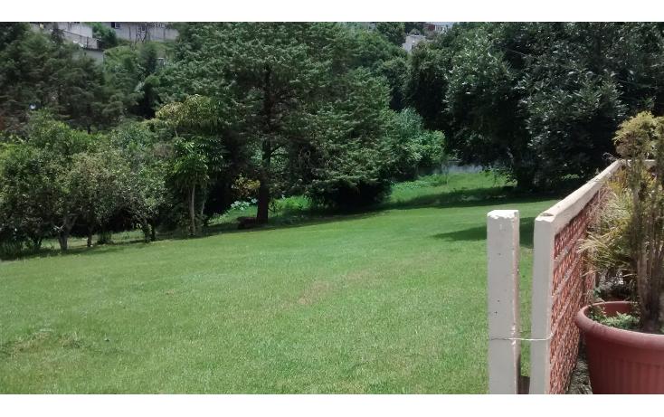 Foto de casa en venta en  , francisco ferrer guardia, xalapa, veracruz de ignacio de la llave, 1191757 No. 08