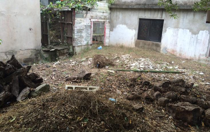Foto de terreno habitacional en venta en  , francisco i madero, ciudad madero, tamaulipas, 1119173 No. 02
