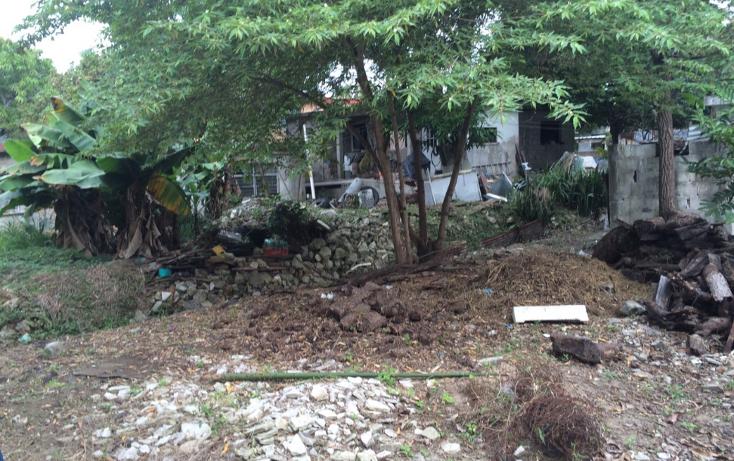 Foto de terreno habitacional en venta en  , francisco i madero, ciudad madero, tamaulipas, 1119173 No. 04