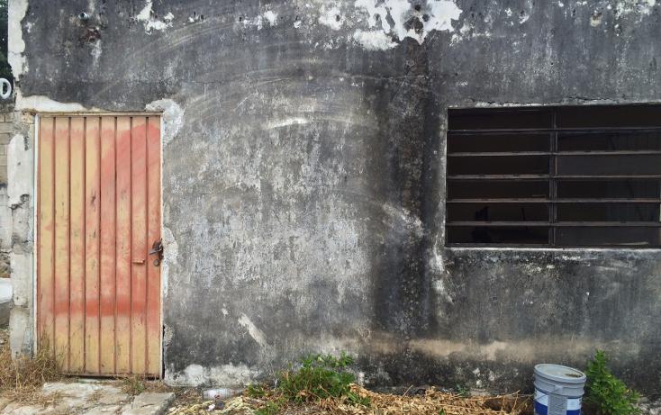 Foto de terreno habitacional en venta en  , francisco i madero, mérida, yucatán, 1556612 No. 05