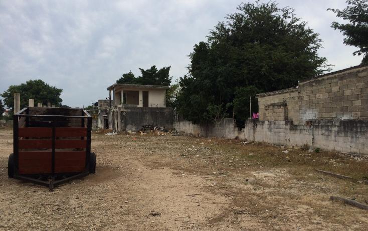 Foto de terreno habitacional en venta en  , francisco i madero, mérida, yucatán, 1556612 No. 07