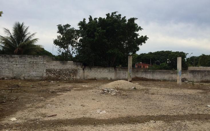 Foto de terreno habitacional en venta en  , francisco i madero, mérida, yucatán, 1556612 No. 10