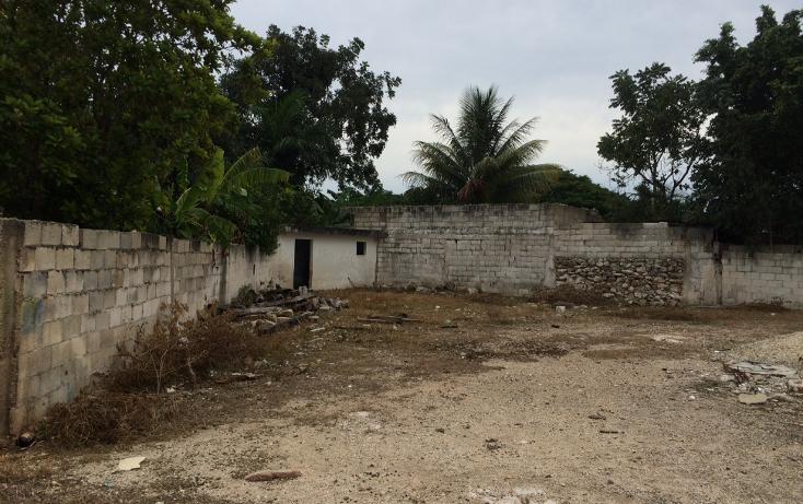 Foto de terreno habitacional en venta en  , francisco i madero, mérida, yucatán, 1556612 No. 11