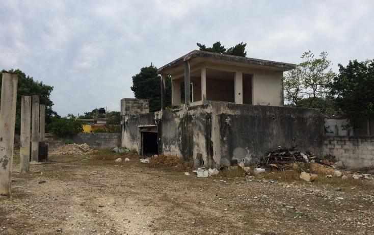 Foto de terreno habitacional en venta en  , francisco i madero, mérida, yucatán, 1556612 No. 12