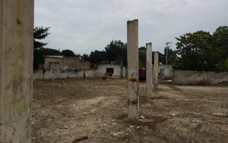 Foto de terreno habitacional en venta en  , francisco i madero, mérida, yucatán, 1556612 No. 17