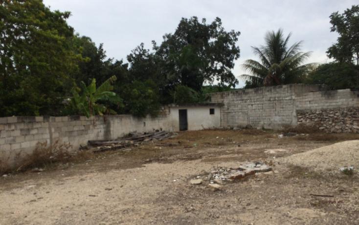 Foto de terreno habitacional en venta en  , francisco i madero, mérida, yucatán, 1556612 No. 18