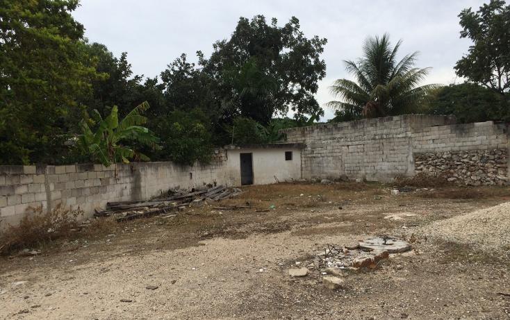 Foto de terreno habitacional en venta en  , francisco i madero, mérida, yucatán, 1556612 No. 19