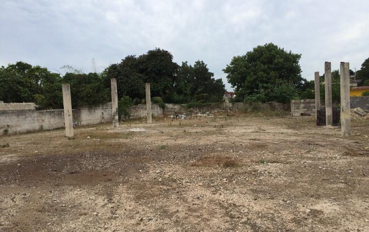 Foto de terreno habitacional en venta en  , francisco i madero, mérida, yucatán, 1556612 No. 20