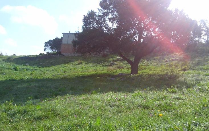 Foto de terreno habitacional en venta en  , francisco javier clavijero, puebla, puebla, 3425037 No. 05