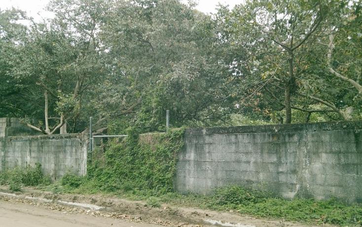 Foto de terreno comercial en venta en  , francisco medrano, altamira, tamaulipas, 1269949 No. 02