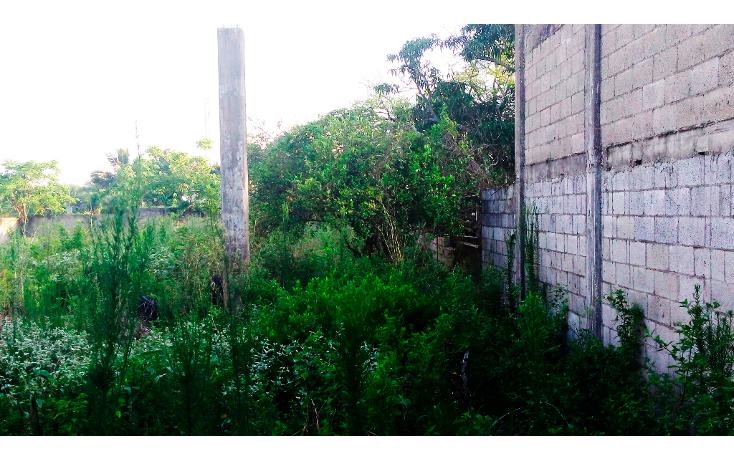 Foto de terreno habitacional en venta en  , francisco medrano, altamira, tamaulipas, 1270469 No. 04