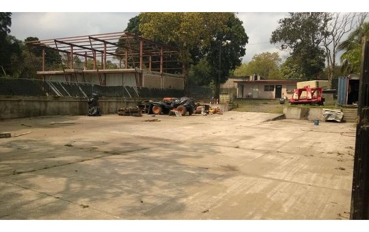 Foto de terreno habitacional en venta en  , francisco medrano, altamira, tamaulipas, 1274373 No. 05