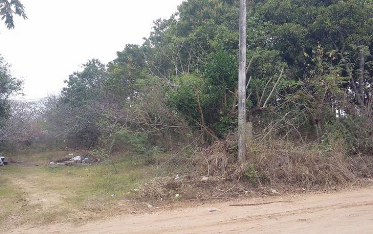 Foto de terreno comercial en venta en, francisco medrano, altamira, tamaulipas, 1730412 no 03