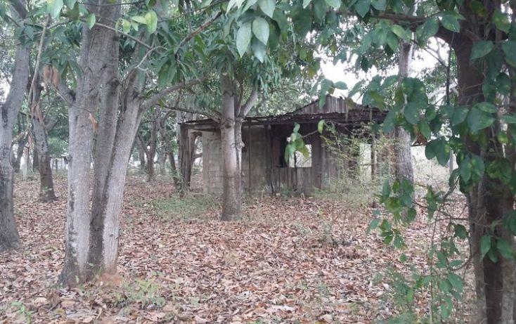 Foto de terreno comercial en venta en, francisco medrano, altamira, tamaulipas, 1730412 no 04