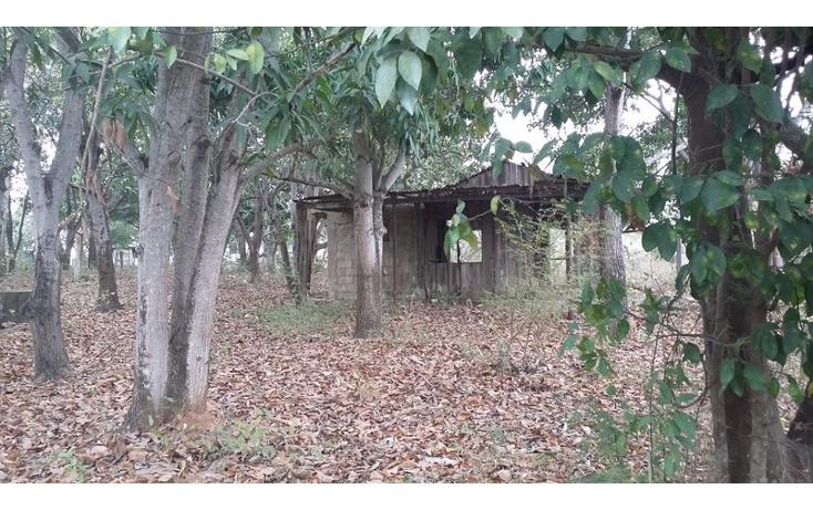 Foto de terreno comercial en venta en  , francisco medrano, altamira, tamaulipas, 1730412 No. 04