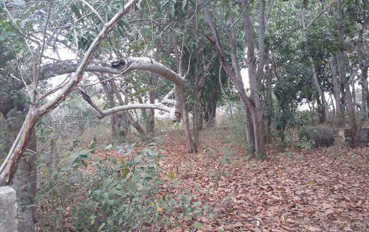 Foto de terreno comercial en venta en, francisco medrano, altamira, tamaulipas, 1730412 no 05