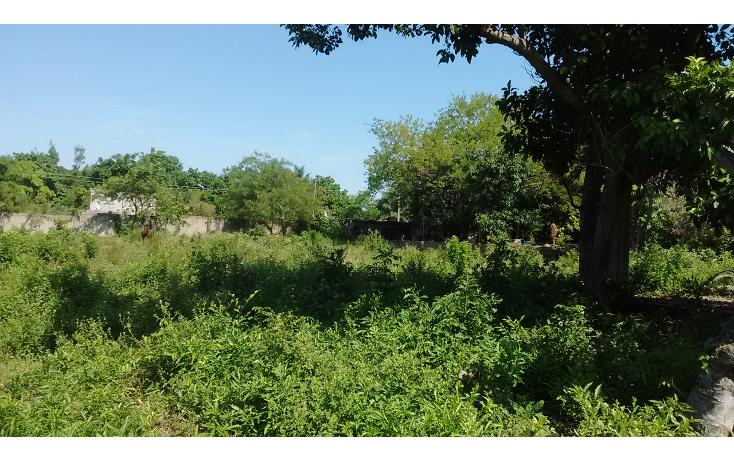 Foto de terreno comercial en venta en  , francisco medrano, altamira, tamaulipas, 1986198 No. 03