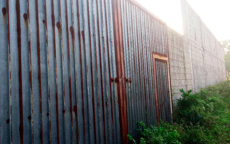 Foto de terreno habitacional en venta en  , francisco medrano, altamira, tamaulipas, 2642582 No. 06