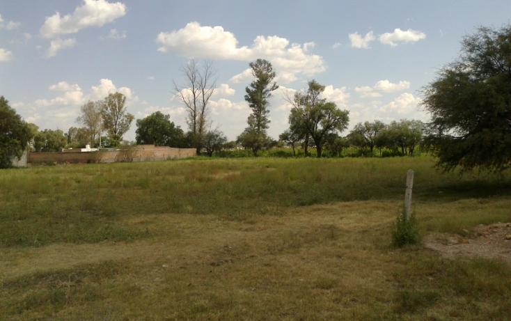 Foto de terreno habitacional en venta en francisco villa s/n , san ignacio, aguascalientes, aguascalientes, 1713616 No. 07