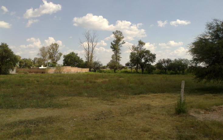 Foto de terreno habitacional en venta en francisco villa s/n , san ignacio, aguascalientes, aguascalientes, 1713616 No. 08
