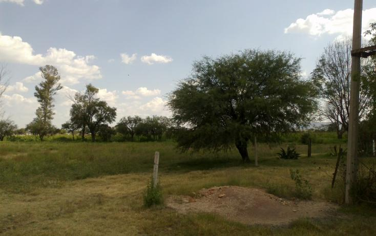 Foto de terreno habitacional en venta en francisco villa s/n , san ignacio, aguascalientes, aguascalientes, 1713616 No. 12