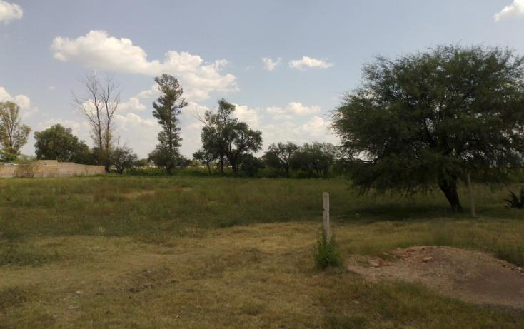 Foto de terreno habitacional en venta en francisco villa s/n , san ignacio, aguascalientes, aguascalientes, 1713616 No. 16