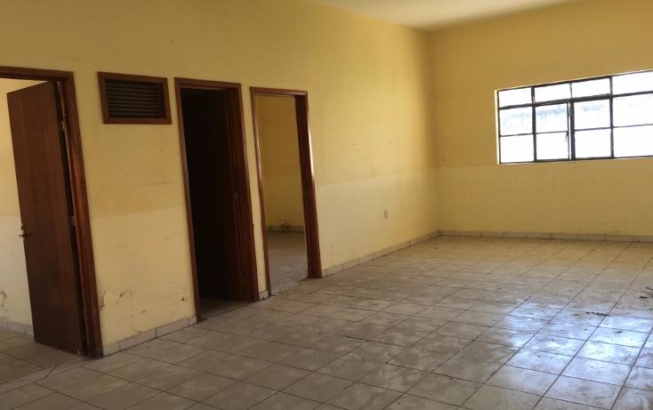 Foto de casa en renta en  , fray junipero serra, tepic, nayarit, 1552846 No. 06