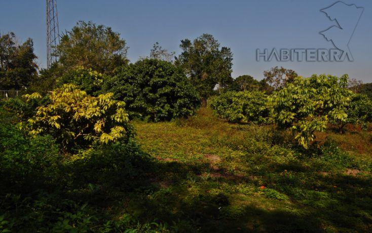 Foto de terreno habitacional en venta en, frijolillo, tuxpan, veracruz, 1609112 no 07