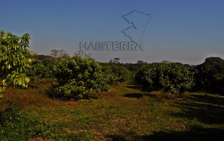 Foto de terreno habitacional en venta en, frijolillo, tuxpan, veracruz, 1609112 no 08
