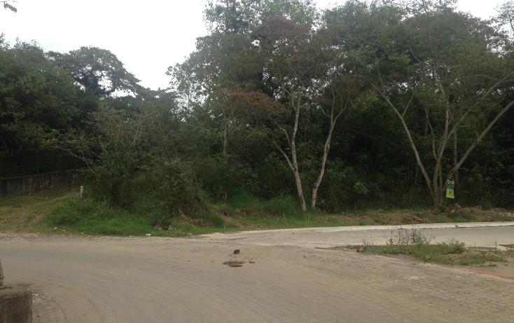 Foto de terreno habitacional en venta en  , fuentes de las ánimas, xalapa, veracruz de ignacio de la llave, 1100129 No. 01