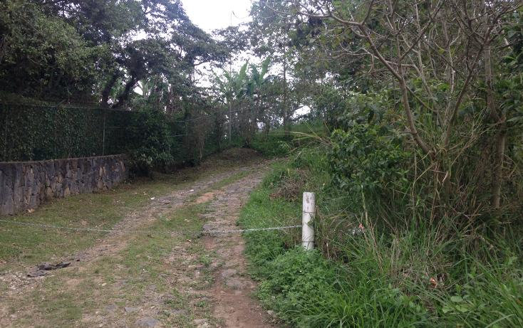 Foto de terreno habitacional en venta en  , fuentes de las ánimas, xalapa, veracruz de ignacio de la llave, 1100129 No. 02