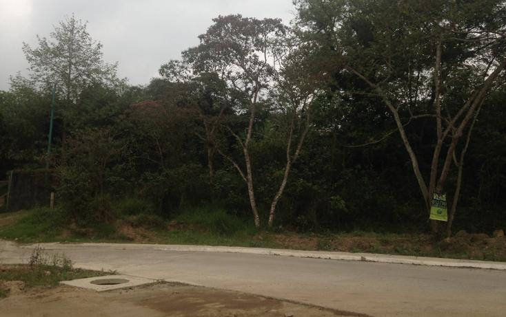 Foto de terreno habitacional en venta en  , fuentes de las ánimas, xalapa, veracruz de ignacio de la llave, 1100129 No. 07