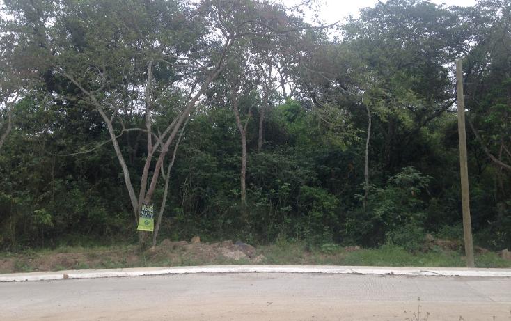 Foto de terreno habitacional en venta en  , fuentes de las ánimas, xalapa, veracruz de ignacio de la llave, 1100129 No. 08