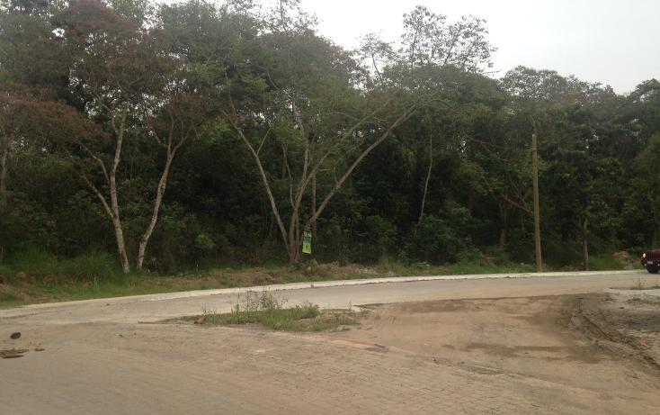 Foto de terreno habitacional en venta en  , fuentes de las ánimas, xalapa, veracruz de ignacio de la llave, 1100129 No. 09